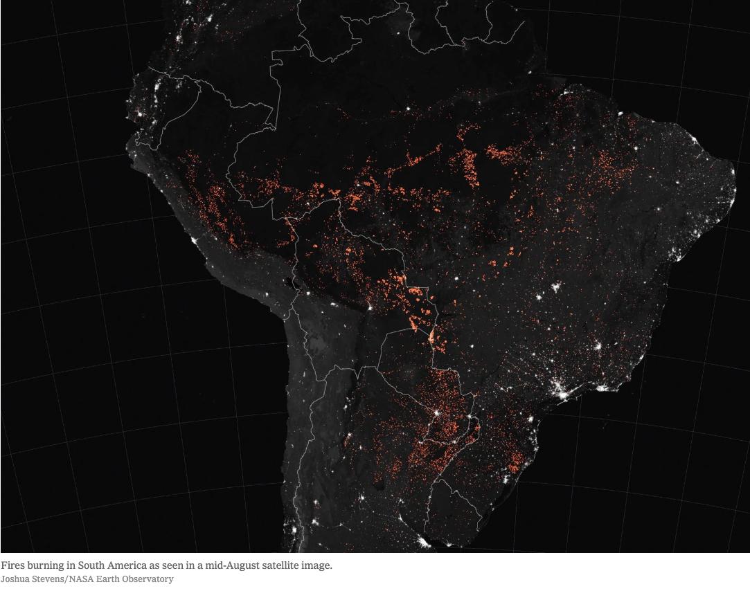 amazon-fires-image